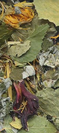 Natural-Vit Suszone zioła dla KOSZATNICZKI 70 g Korona Natury