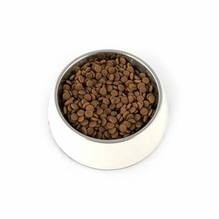 PUPIL Premium JUNIOR MEDIUM & LARGE bogata w wołowinę 12 kg