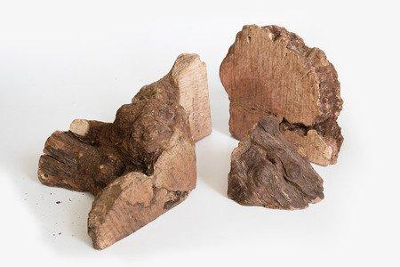 Recosnack Korzeń hiszpańskiego drzewa wrzosowego L 300 - 500 g