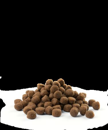VERSELE-LAGA Opti Life Adult Active 12,5 kg