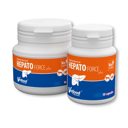 Vetfood Hepatoforce Plus 90 tabletek